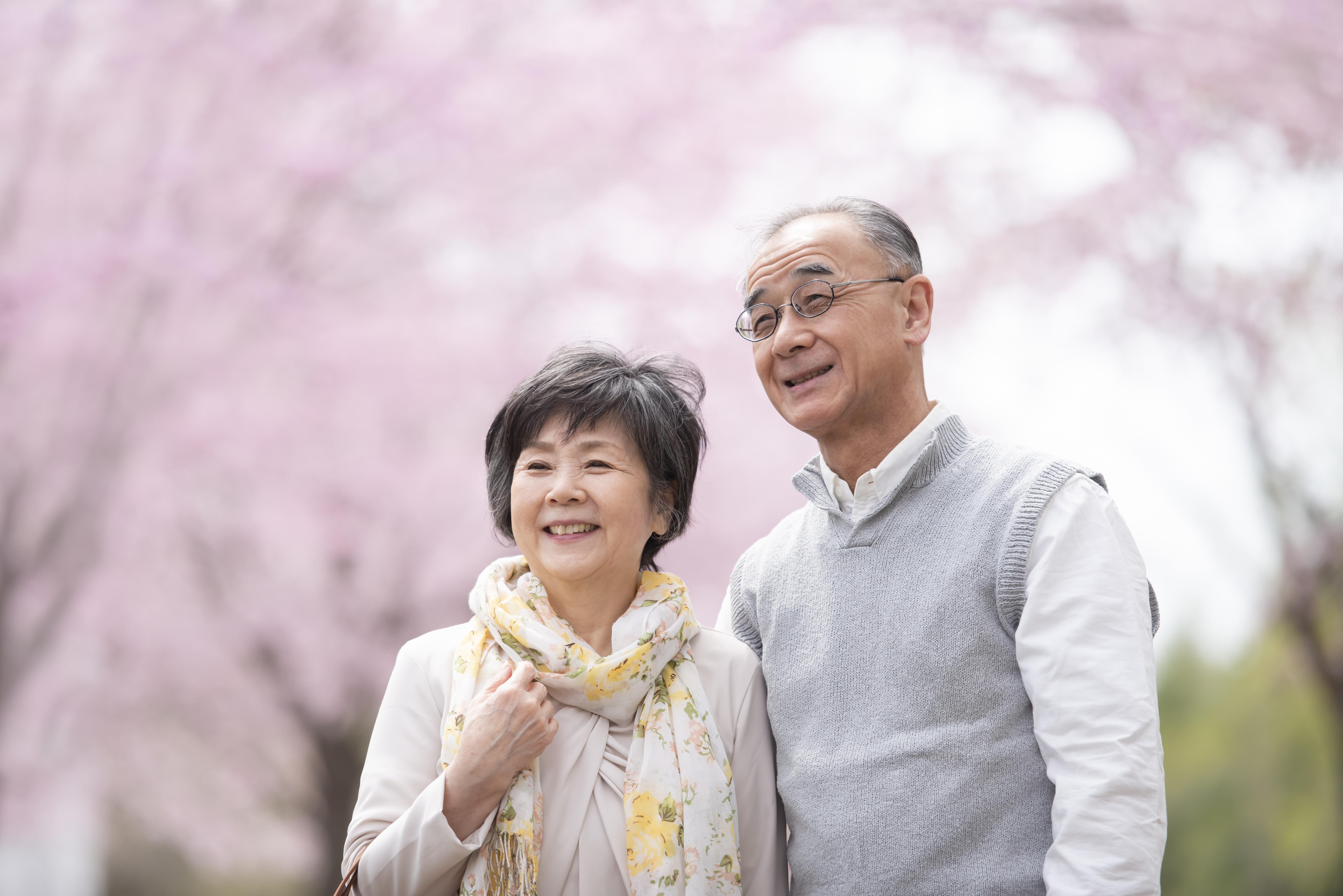 桜の中で微笑むシニア夫婦